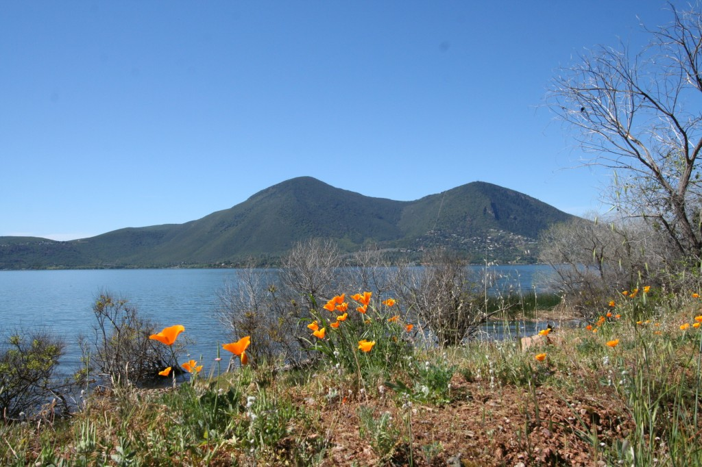 Mount Konocti & Clear Lake on a nice spring day. 3-29-2015